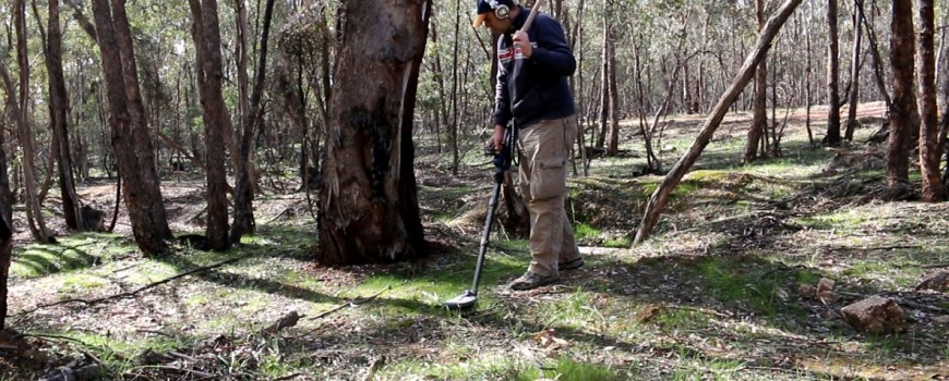 nenad lonic phase technical adelaide hills gold detecting sdc 2300